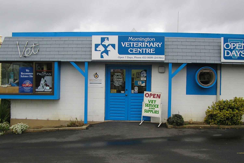 Flea Control Services in St Kilda & Mornington
